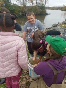 children examining a bucket of water
