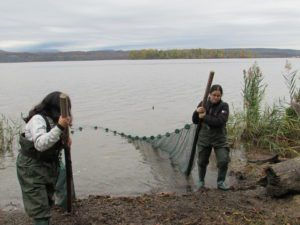 students wading in river and holding seine net