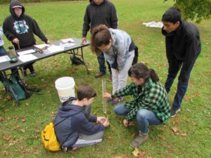 students examining water samples