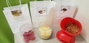 paper bags with items in front