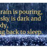 haiku over rain background