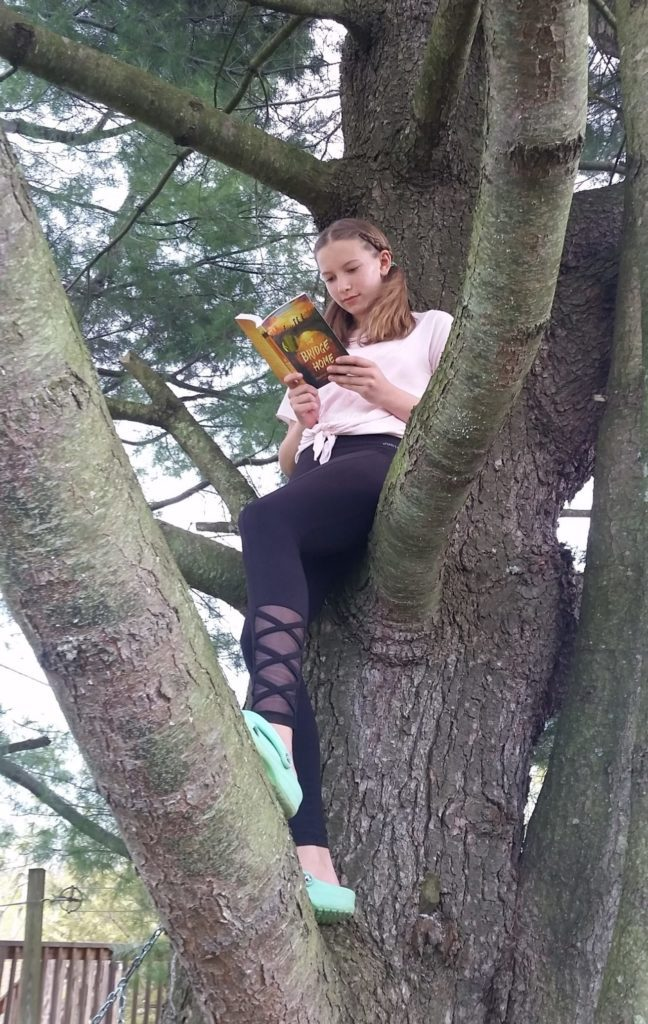 girl reads a book while sitting in a tree